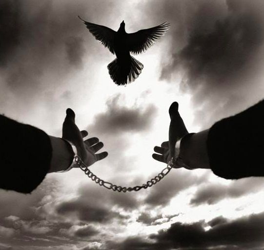 حرائر وأحرار دون حرية